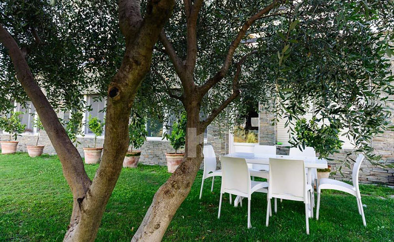 Shitet ose jepet me qira nje vilë mbreslënëse pranë TEG-ut, në Tiranë, oborri