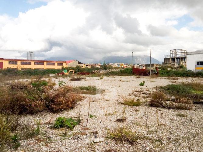 Shitet truall ne Laprake, foto 1